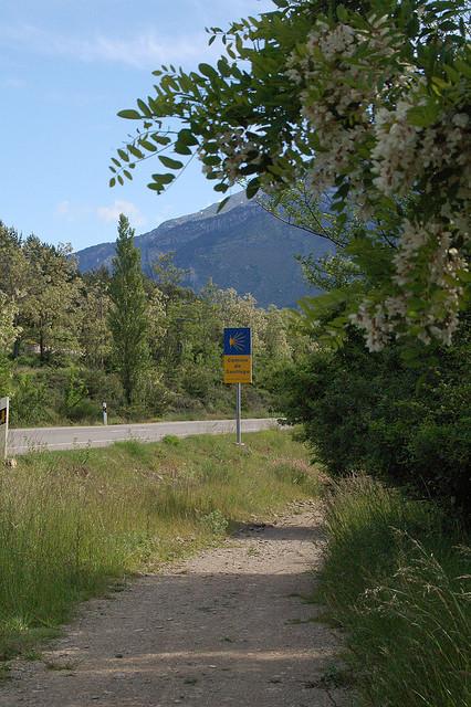 Cammino di Santiago zaino in spalla