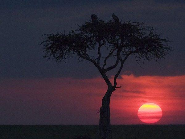 Masai Mara tramonto