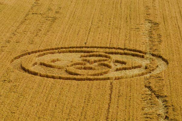 Cerchi nel grano