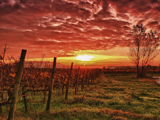 franciacorta tramonto
